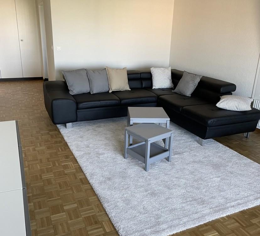 Appartement 3.5 pièces rénové 4ème étage