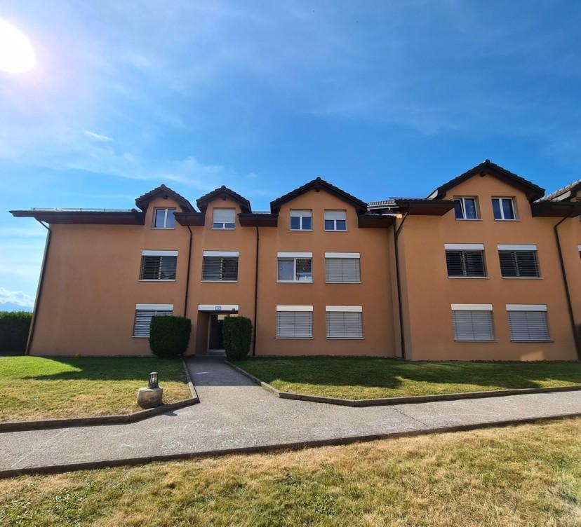 Grand appartement 3.5 pièces au rez avec terrasse