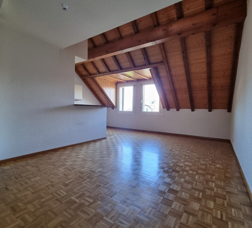 Appartement en duplex de 2.5 pièces dans les combles